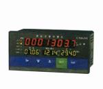 PD319-WP-L流量积算控制仪